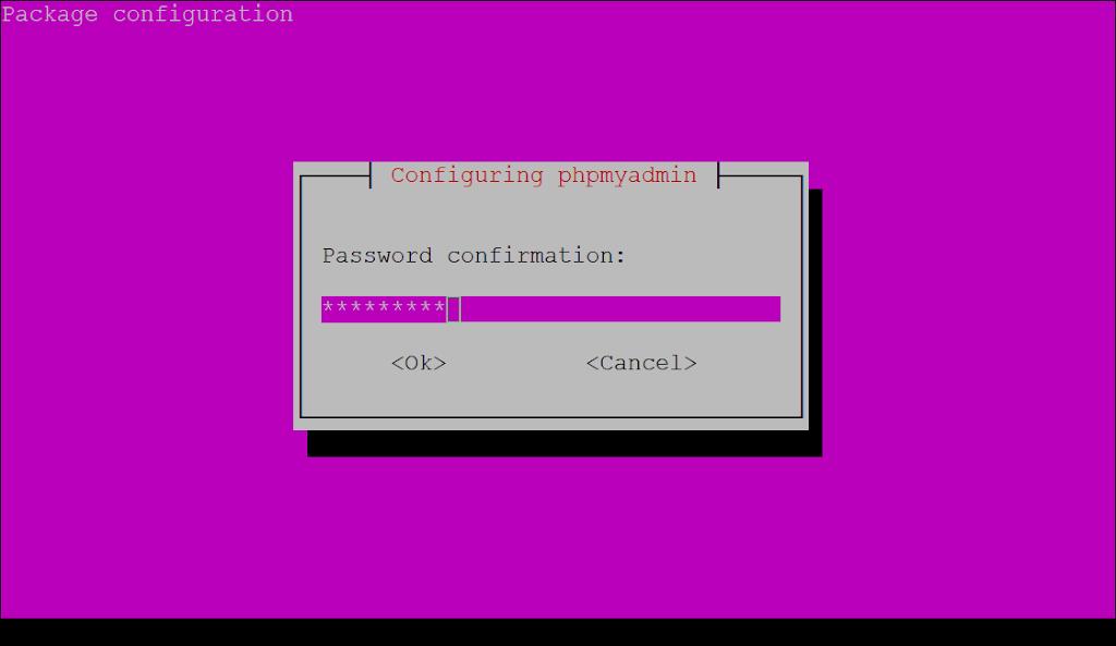 Confirm phpmyadmin password