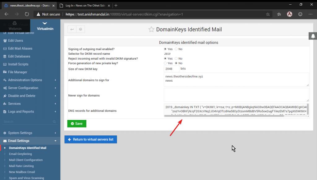 DNS update DKIM TXT