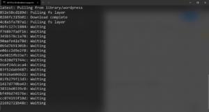 Docker Compose Downloading output